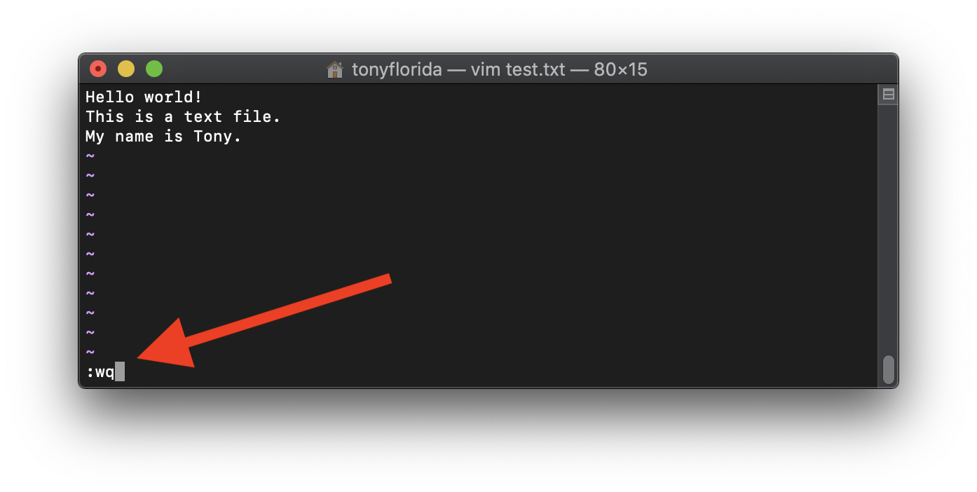 Save file and exit Vim in command line mode