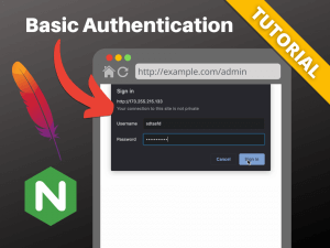 Basic auth on Apache and Nginx