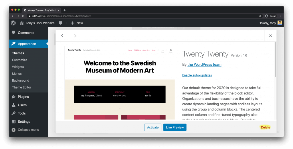 Deleting WordPress Twenty Twenty theme
