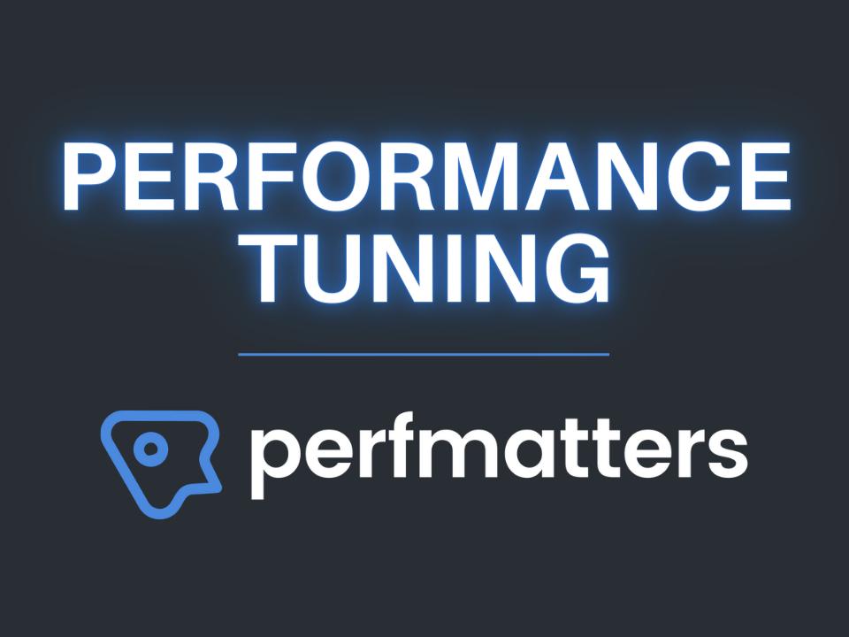 Perfmatters WordPress plugin performance tuning review